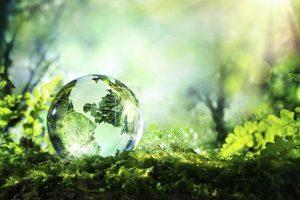 Asesoria medioambiental